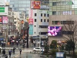 shinagawa_sis_vision_2